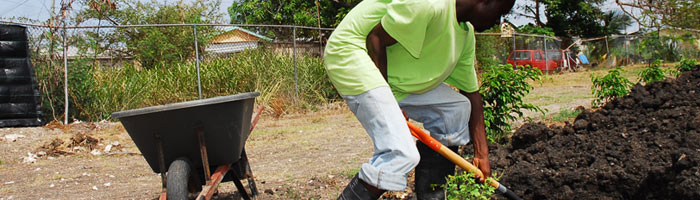 Banner image of man shovelling dirt in garden